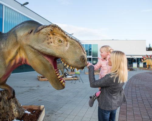 Dino Outdoor